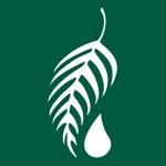 Melaleuca App Alternatives