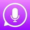 iTranslate Voice alternatives