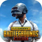 PUBG MOBILE 3RD ANNIVERSARY App Support