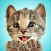 Little Kitten -My Favorite Cat Positive Reviews, comments