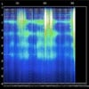 Product details of Schumann Resonance