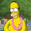 The Simpsons™: Tapped Out contact information