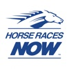 Product details of Horse Races Now