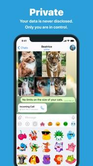 Telegram Messenger iphone screenshot 4