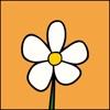 Homeopathy at Home alternatives