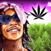 Wiz Khalifa's Weed Farm contact information
