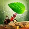 Little Ant Colony - Idle Game Positive Reviews, comments