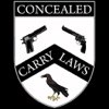 Concealed Carry Gun Laws alternatives