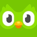 Duolingo - Language Lessons App Positive Reviews