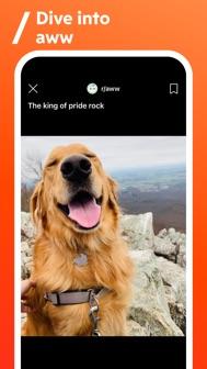 Reddit iphone screenshot 4