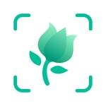 PictureThis - Plant Identifier App Negative Reviews
