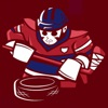 Astonishing Hockey 21 negative reviews, comments