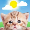 Product details of Weather Kitty: Weather + Radar