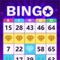 Similar Bingo Clash: win real cash Apps