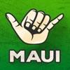 Maui Road to Hana Driving Tour alternatives