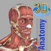 Product details of 3D Anatomy