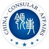 Product details of 中国领事