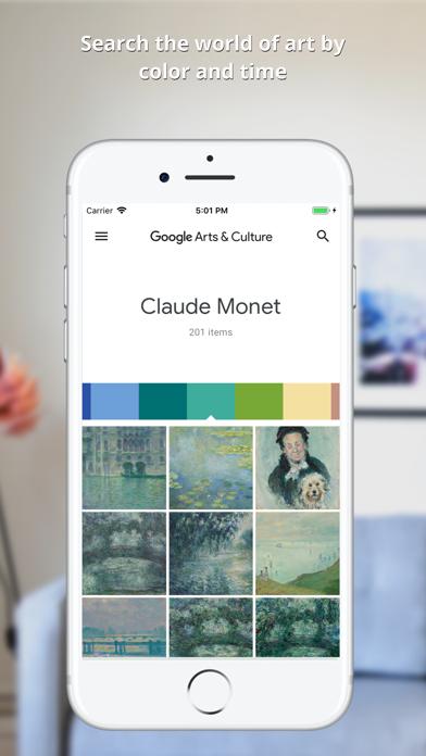 How to cancel & delete Google Arts & Culture 0