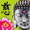 Wisdom Cards - Spiritual Guide contact