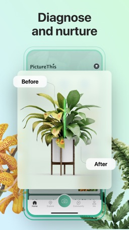 How to cancel & delete PictureThis - Plant Identifier 3