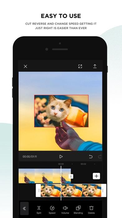 CapCut iphone screenshot 2